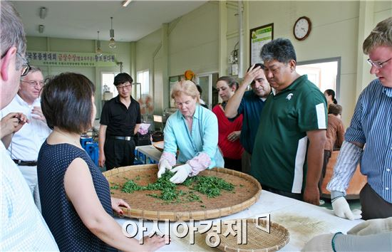 정읍시농업기술센터, '자생차 우수성 알리기' 체험 행사