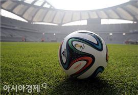 2014 브라질 월드컵 공인구 브라주카[사진=정재훈 기자]