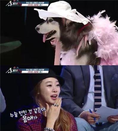 ▲최여진 독설(출처: KBS2 '슈퍼독' 방송화면 캡처)