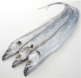 """3년만에 1위 오른 '갈치'…""""어획량 늘고 가격 내려"""""""