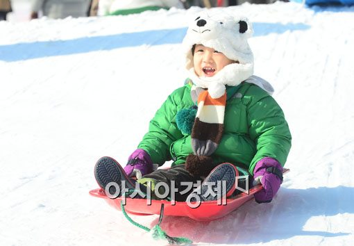 [포토]하얀 눈 속 하얀 북극곰 어린이