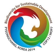 '청마의 해' 2014년 열리는 국제행사는