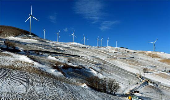 양대강탐방길중 백두대간코스인 매봉산 바람의언덕