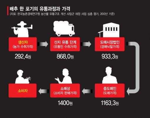 [농산물 유통단계 줄이자<上>] 직송배추 습격사건