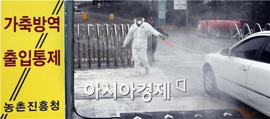 [포토]농진청 조류인플루엔자 방역 실시