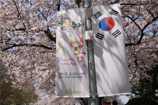 한강여의도 봄꽃축제
