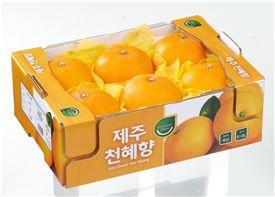 '가격 떨어진' 만감류, 오렌지 매출 제쳤다