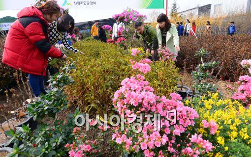 [포토]꽃과 나무 보는 시민들
