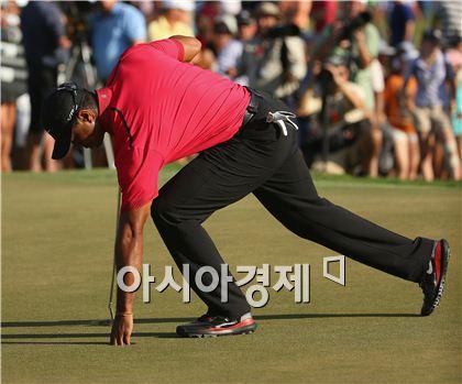 타이거 우즈가 캐딜락챔피언십 최종일 당시 허리 부상으로 등을 세운채 공을 집고 있는 모습. 사진=Getty images/멀티비츠