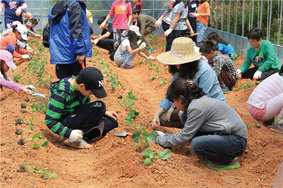 창조관광기업 '라우'의 '꼬마농부상상학교'의 모습.