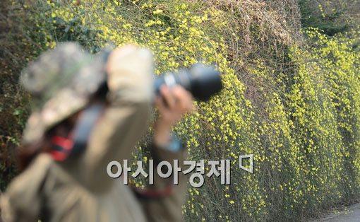 [포토]봄을 담다