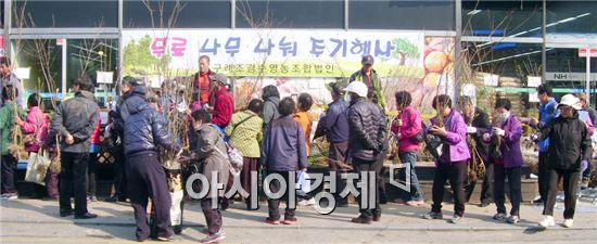 구례군 조경수협회가  무료 나무 나눠주기 행사를 가졌다.