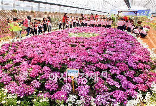 지난해 열린 광양 꽃축제