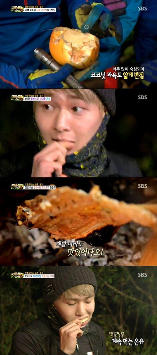 SBS '정글의법칙in보르네오'