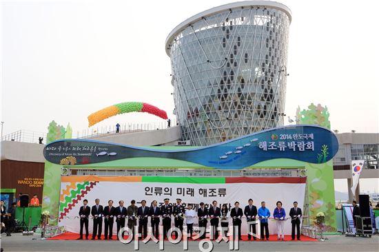 완도국제해조류박람회가 11일 오전 9시 주제관을 비롯한 4개 전시관, 체험장, 해양문화존에 대한 개장식을 갖고 공식 개막했다.