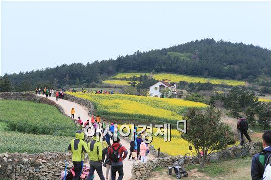 2014청산도슬로우걷기축제 공식개막식날 청산도를 찾은 관광객들