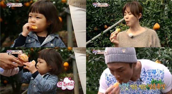 ▲추사랑 가족의 한라봉 먹방. (사진: KBS2 '슈퍼선데이-슈퍼맨이 돌아왔다' 방송 캡처)