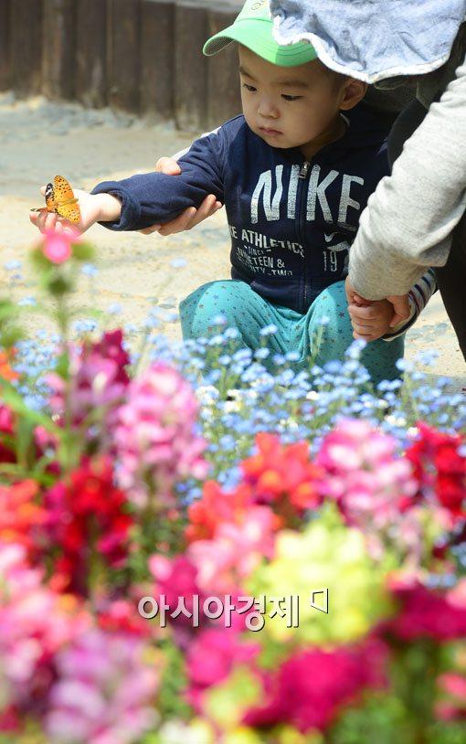 [포토]'엄마, 내 손위에 나비가'