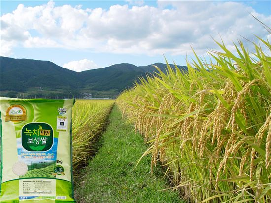 <'녹차미인 보성 쌀'이 '전남 10대 고품질 브랜드 쌀'에 7년 연속으로 선정되는 등 호평을 받고 있다.>