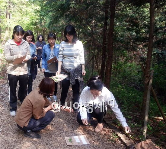 장성군이 지역 예비맘들을 대상으로 숲을 통한 태교 프로그램을 운영해 눈길을 끌고있다.