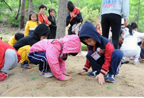 유아숲체험