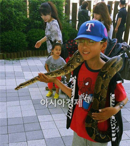순천만정원 내 '야생동물원'이 어린이를 비롯한 관람객들로부터 선풍적인 인기를 얻고 있다.