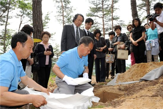 한 유족이 경기도 양평에 있는 하늘숲추모원에서 추모목에 유골을 안치하고 있다.