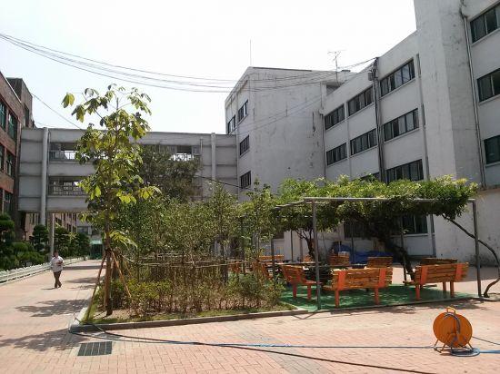 서울 덕수고 학교숲 전경