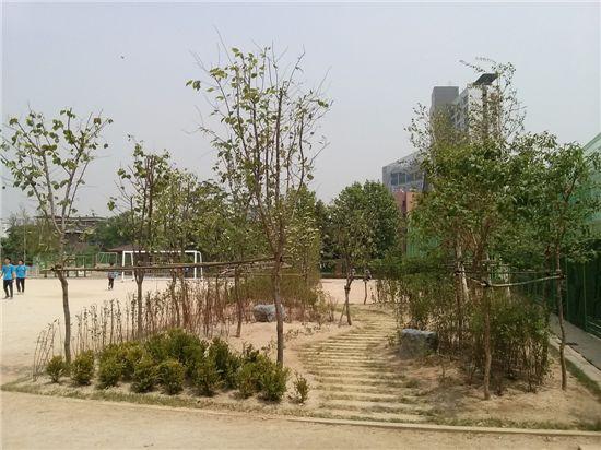 서울 돈암초등학교 학교숲