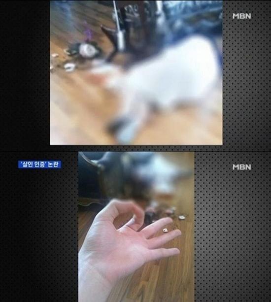 ▲일베 살인 인증샷 논란 (사진: MBN 보도화면 캡처)