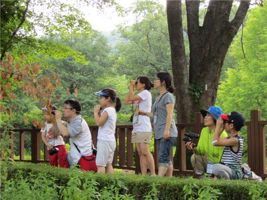 캠프참가 가족들이 이른 아침 광릉숲 속의 산새탐험을 하고 있다.