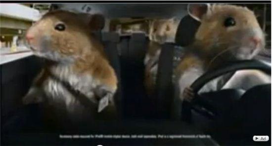 기아차 '쏘울 햄스터 광고' 화면