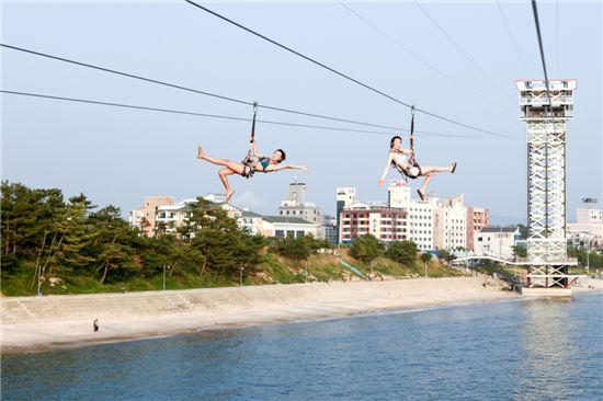 대천해수욕장에 설치된 '짚 트랙'