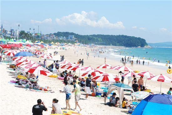서해안 최대 피서지 대천해수욕장에서 피서객들이 더위를 식히고 있다.