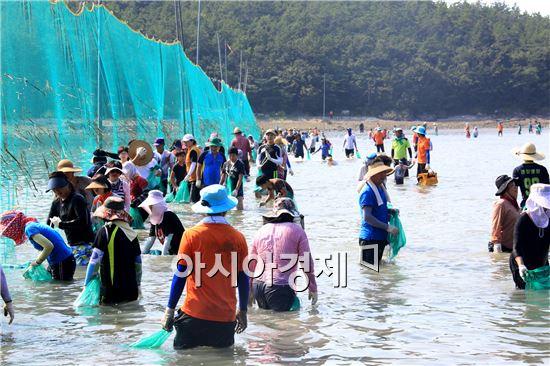 개매기 체험에 나선 관광객들이 고기잡이 바다체험 행사를 실시하고있다.