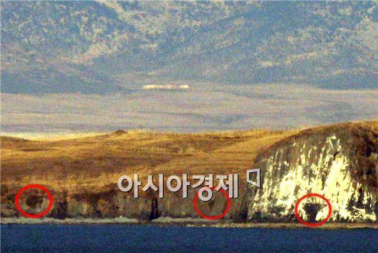 사진은 북한의 해안포 사진
