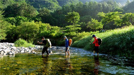 계곡을 걷는 트레커들