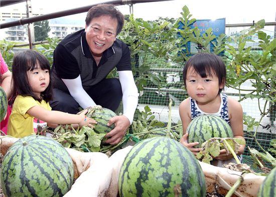 차성수 금천구청장이 아이들과 함께 수박을 수확하고 있다.
