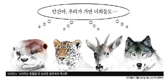 ▲수달, 표범 등도 우리나라에서 멸종위기종으로 지정됐다.[그래픽=이주룡 기자]