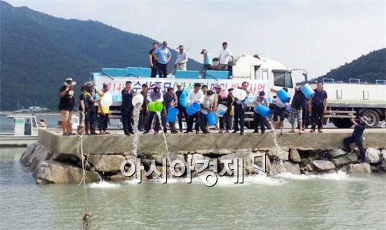 영광군이 연안해역에 감성돔·참조기를 대량 방류했다.