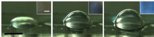 ▲원형의 플렉시블 멤브레인이 공압을 이용해 모든 방향으로 변형되는 모습.[사진제공=미래부]