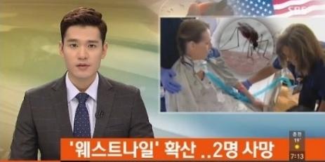 에볼라에 이어 웨스트 나일 바이러스가 확산되고 있다.(사진:SBS 뉴스보도 캡처)