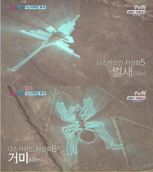 나스카라인(사진:tvN '꽃보다 청춘' 캡처)