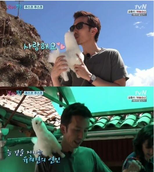 """유희열 라마인형에 """"사랑해요""""(사진:tvN 꽃보다 청춘 캡처)"""
