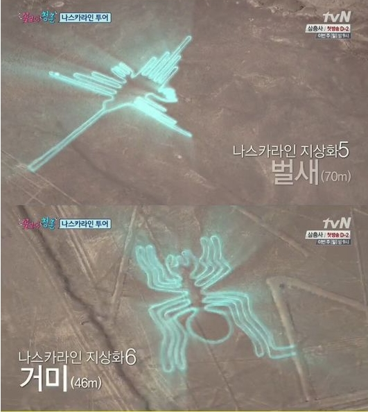 고대 미스터리 나스카라인 투어에 나선 꽃보다 청춘팀(사진:tvN '꽃보다 청춘' 캡처)