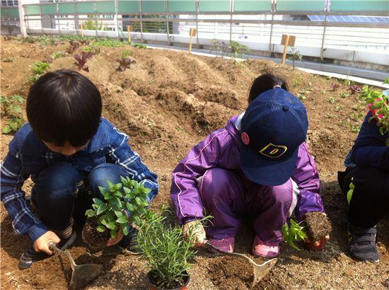 어린이농업학교