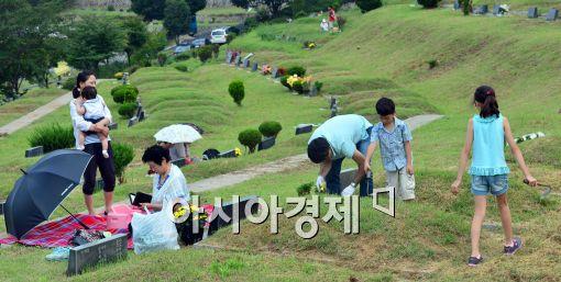 시립묘지에 추석 연휴 성묘객 위한 휴게소·음수대 설치