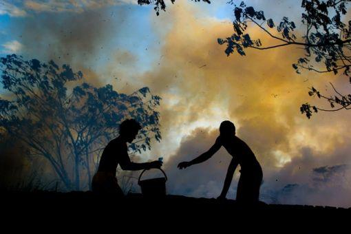 유엔환경계획 한국위원회에서 개최한 '2014 Focus on Your World' 환경사진공모전에서 대상에 수상한 필리핀 출신 로니다요(Ronnie Dayo)의 'Fire'.