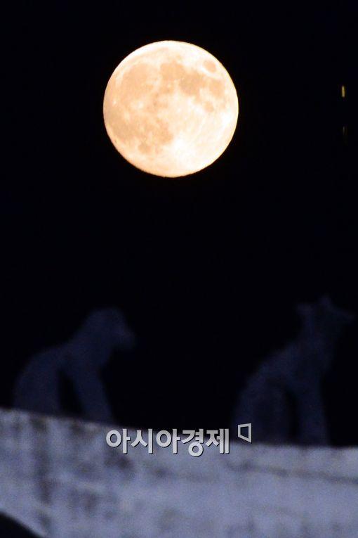 [포토]'서울 하늘에 나타난 슈퍼문'