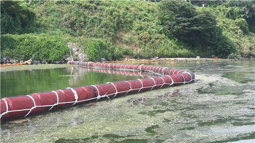경기도가 팔당에 설치한 녹조 차단막 비교사진. 오른쪽의 녹조가 왼쪽으로 파급되지 않아 왼쪽 물이 깨끗하다.